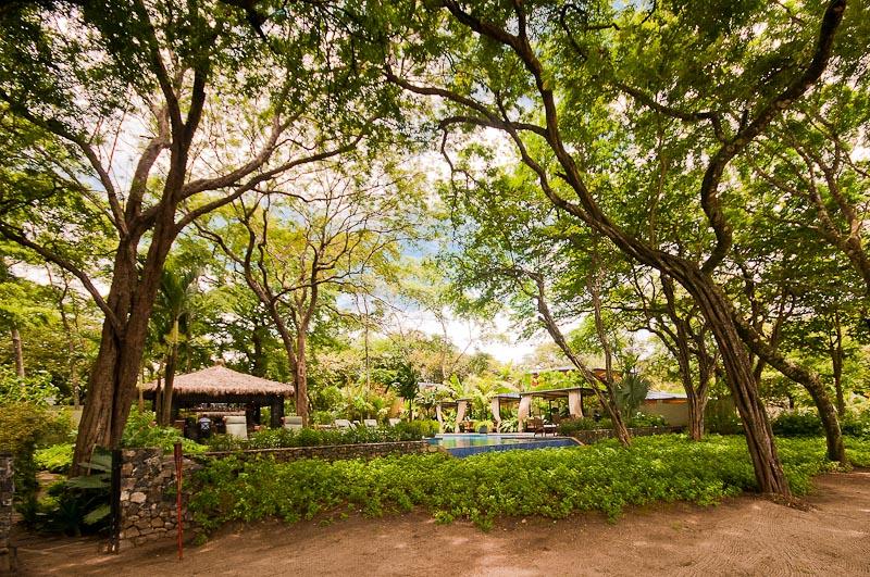 Ibis Condos at Langosta Beach Club rentals in Tamarindo Costa Rica