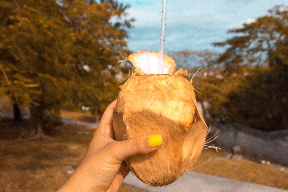 Tamarindo coconuts
